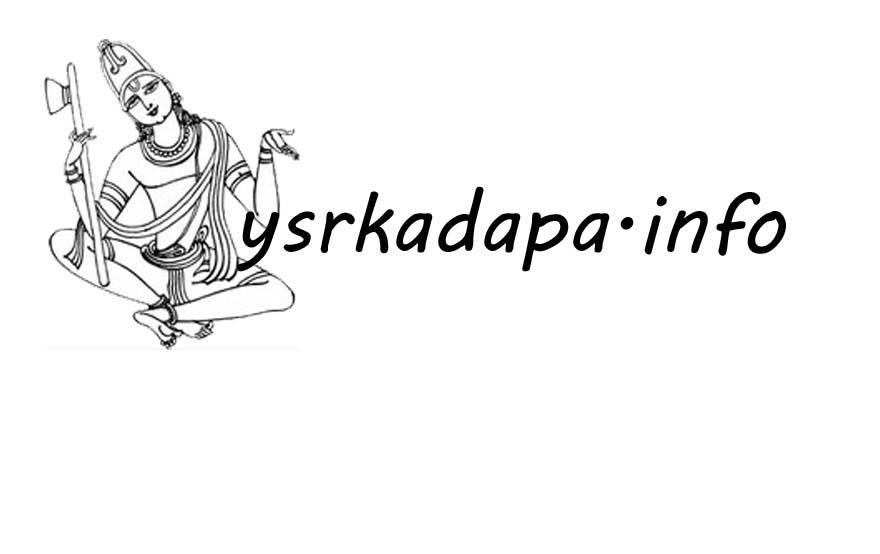 జూన్ 30 లోగా ఇంటింటి సర్వే పూర్తి : రాష్ట్ర ఎన్నికల అధికారి